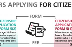 Minor fees